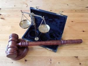 Jurisprudencia, sentencias contenciosas administrativas flora y fauna
