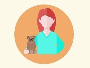 Curso de dirección y gestión de clínica veterinaria: atención al cliente y marketing