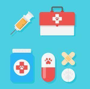 Una revisión a la eutanasia en animales