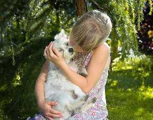 Relación entre niños y los animales
